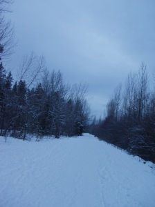 Winter Wonderland 04